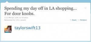 Taylor Swift Twitter Web Copywriter Blog Article